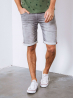 Short en Jean Gris - Petrol Industries